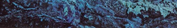 Roxy-Siren-2