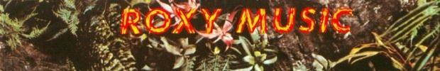 Roxy-Stranded-1